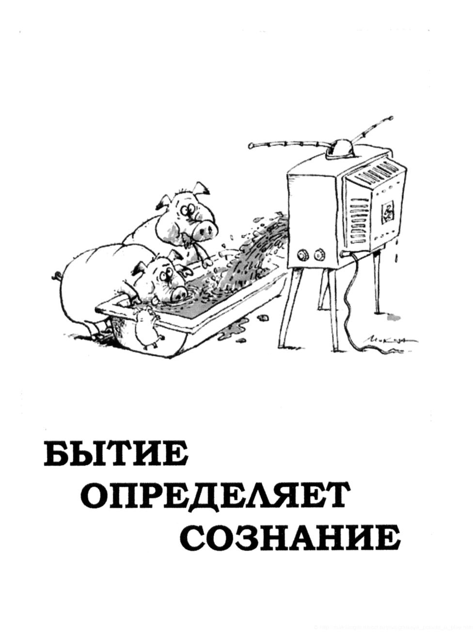 Кавказцы дрочеры в контакте