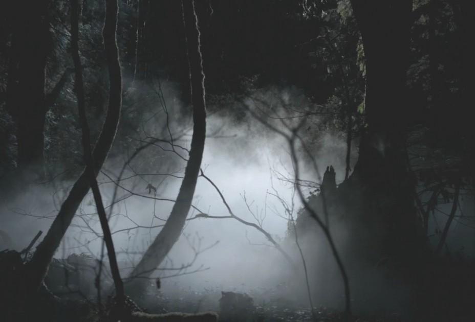 v-lesu-v-troem