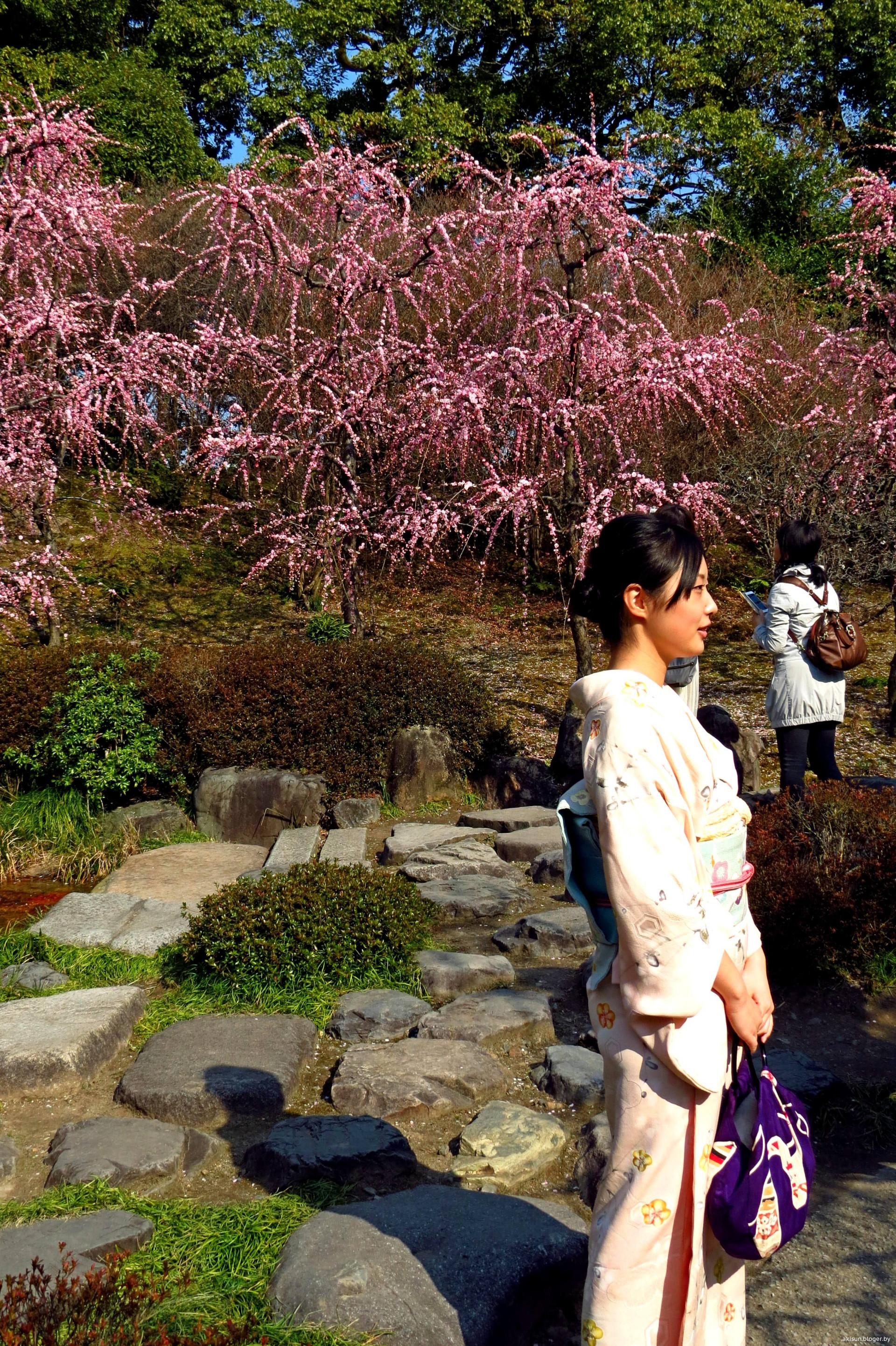 Японка в прозрачной 4 фотография